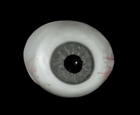 une prothèse oculaire fabriquée par Leopold Blascka