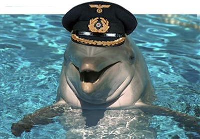11-gay_dolphin_thumb